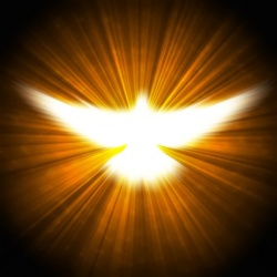 The Evidence of the Holy Spirit - BelieveTheSign